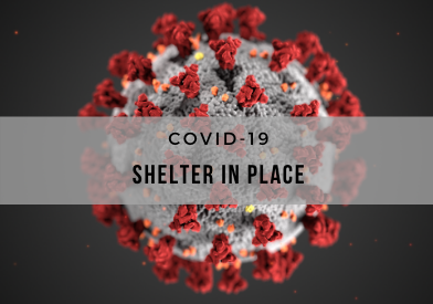 PD Web COVID19 Shelter In Place 392x275